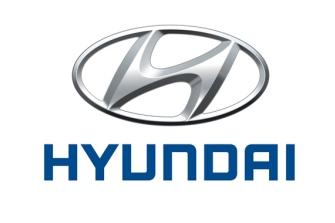Posible fuga de aceite en el Hyundai Ioniq