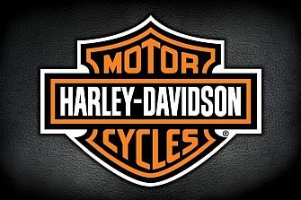 Fallo en el freno trasero de las Harley-Davidson FLHTCUTG, FLRT, FLHTCUTGSE