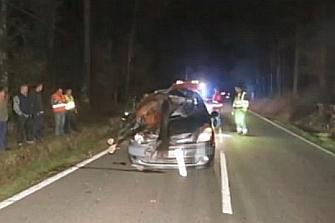 Estadísticas de los accidentes de tráfico provocados por animales