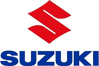 Riesgo de rotura del chasis en las Suzuki GSX-R125/S125